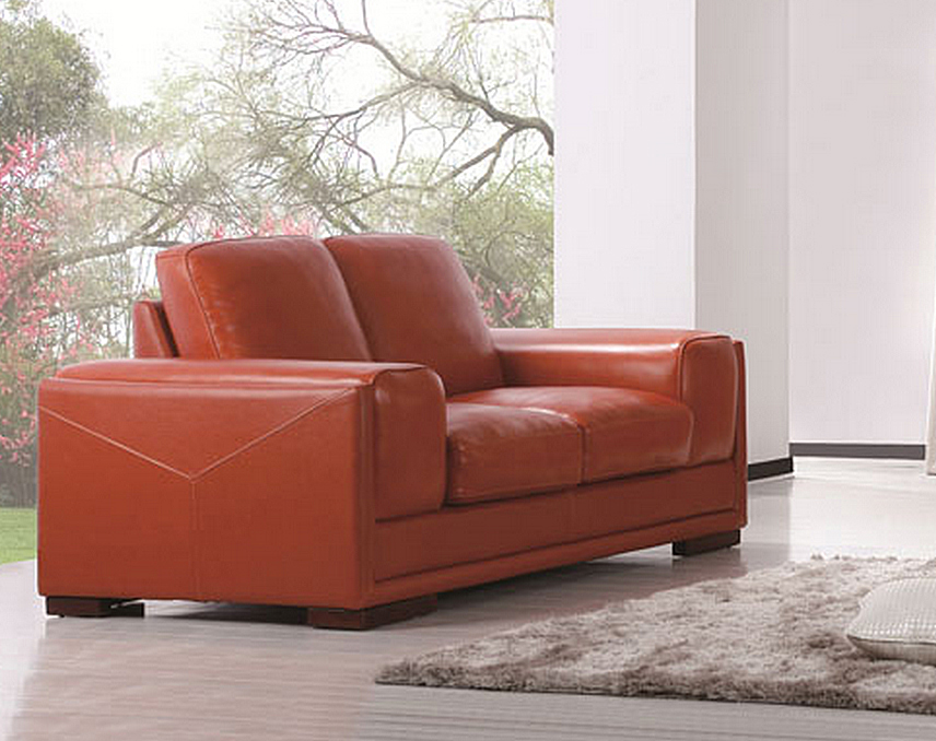 Define Orange Top Grain Leather Loveseat By Diamond Sofa Definelo Sofas Sectionals